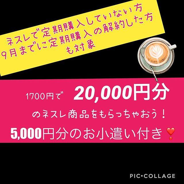 【10月31日まで】1700円で20000円分のネスレ商品をもらっちゃおう!5000円分のお小遣い付き❣️