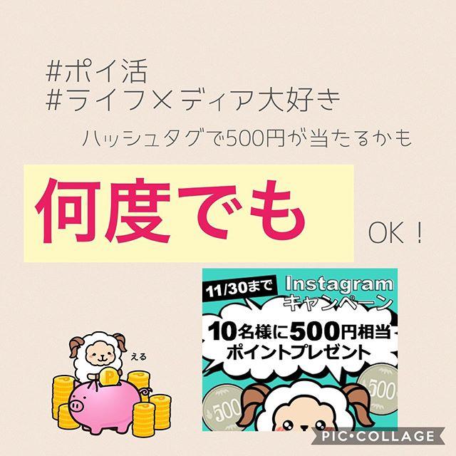 ポイ活ライフメディア大好きハッシュタグで500円が当たるかも!