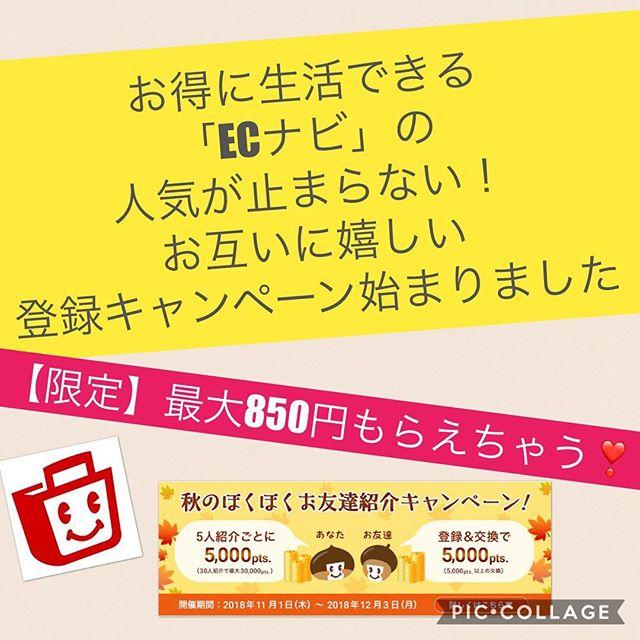 ECナビ『最大850円』もらえる!お互いに嬉しい「秋のほくほくお友達紹介キャンペーン」