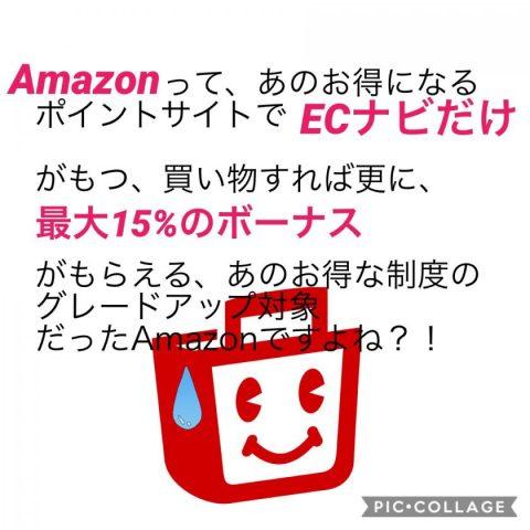 Amazon1%還元で驚くECナビ