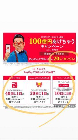 ペイペイ100億円あげちゃうキャンペーン