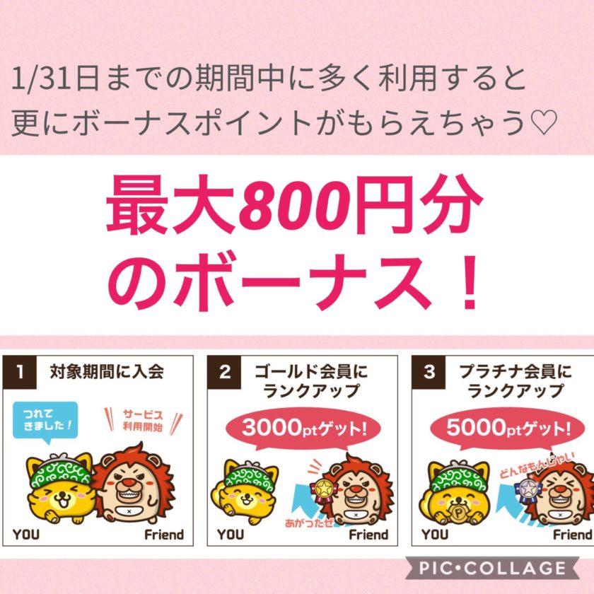 ポイントインカム800円ボーナス