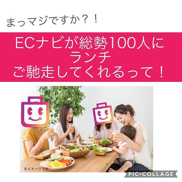 ECナビ新企画!総勢100人に美味しいランチを奢ってくれる!!