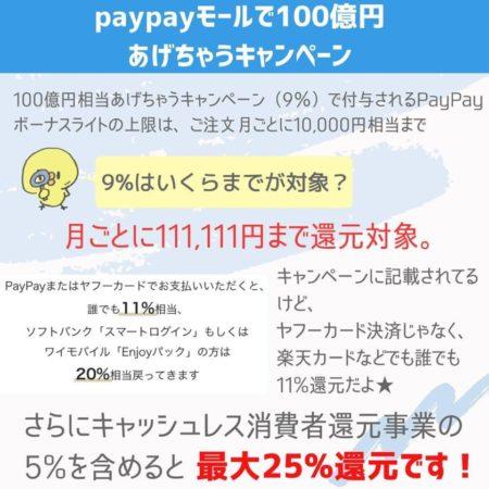 paypayモールの還元買い物